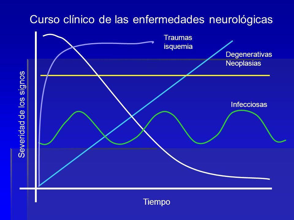 6to paso Localización de la lesión: Localización de la lesión: Cerebro, tallo encefálico: Anomalías de los pares craneales.
