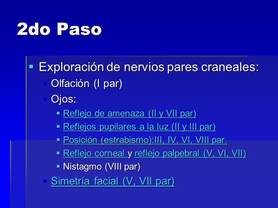 2do Paso Exploración de nervios pares craneales: Exploración de nervios pares craneales: Olfación (I par) Olfación (I par) Ojos: Ojos: Reflejo de amen