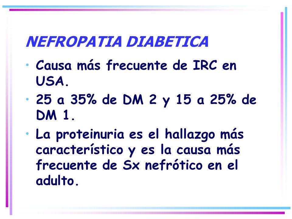 NEFROPATIA DIABETICA Causa más frecuente de IRC en USA. 25 a 35% de DM 2 y 15 a 25% de DM 1. La proteinuria es el hallazgo más característico y es la
