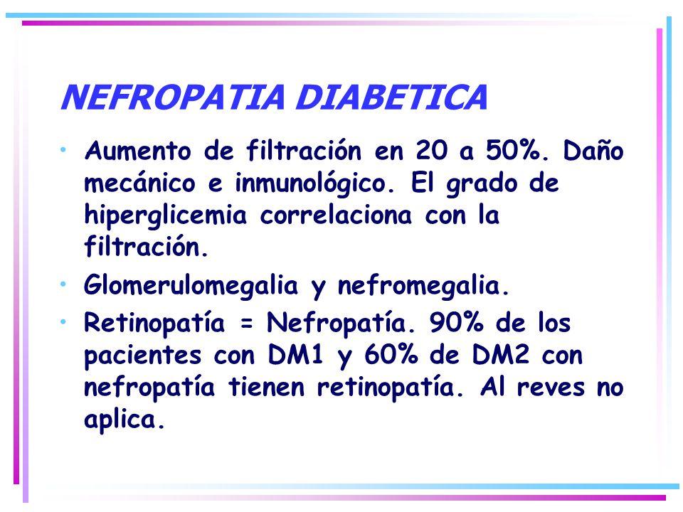 NEFROPATIA DIABETICA Aumento de filtración en 20 a 50%. Daño mecánico e inmunológico. El grado de hiperglicemia correlaciona con la filtración. Glomer