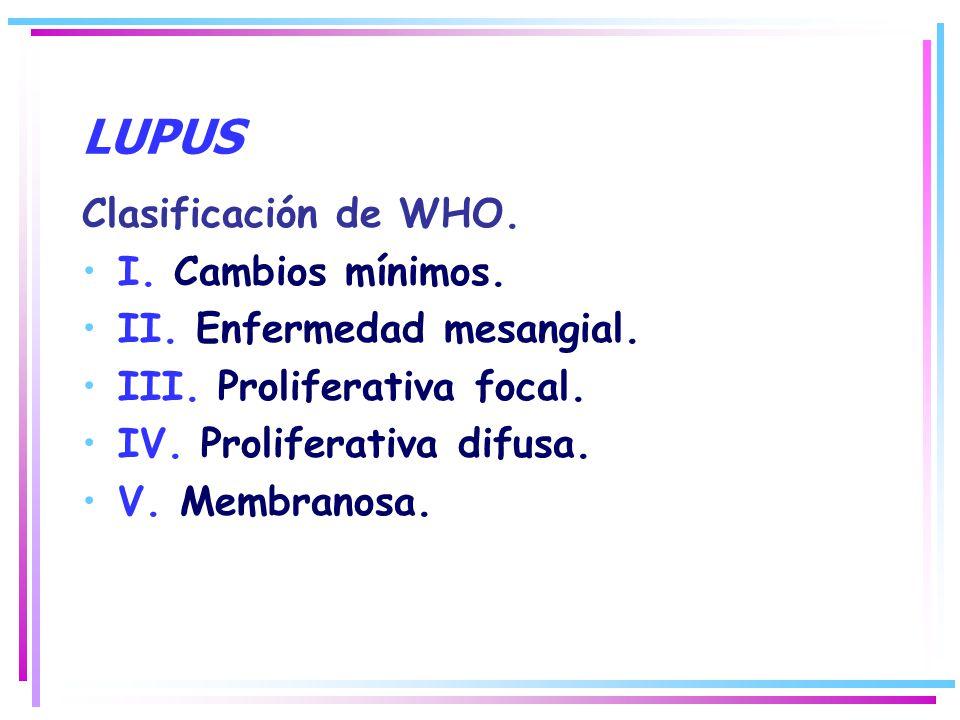 Clasificación de WHO. I. Cambios mínimos. II. Enfermedad mesangial. III. Proliferativa focal. IV. Proliferativa difusa. V. Membranosa.