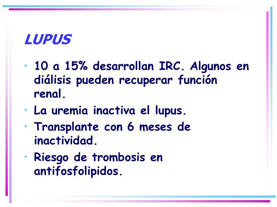 LUPUS 10 a 15% desarrollan IRC. Algunos en diálisis pueden recuperar función renal. La uremia inactiva el lupus. Transplante con 6 meses de inactivida
