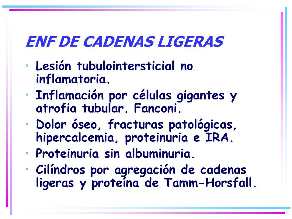 ENF DE CADENAS LIGERAS Lesión tubulointersticial no inflamatoria. Inflamación por células gigantes y atrofia tubular. Fanconi. Dolor óseo, fracturas p