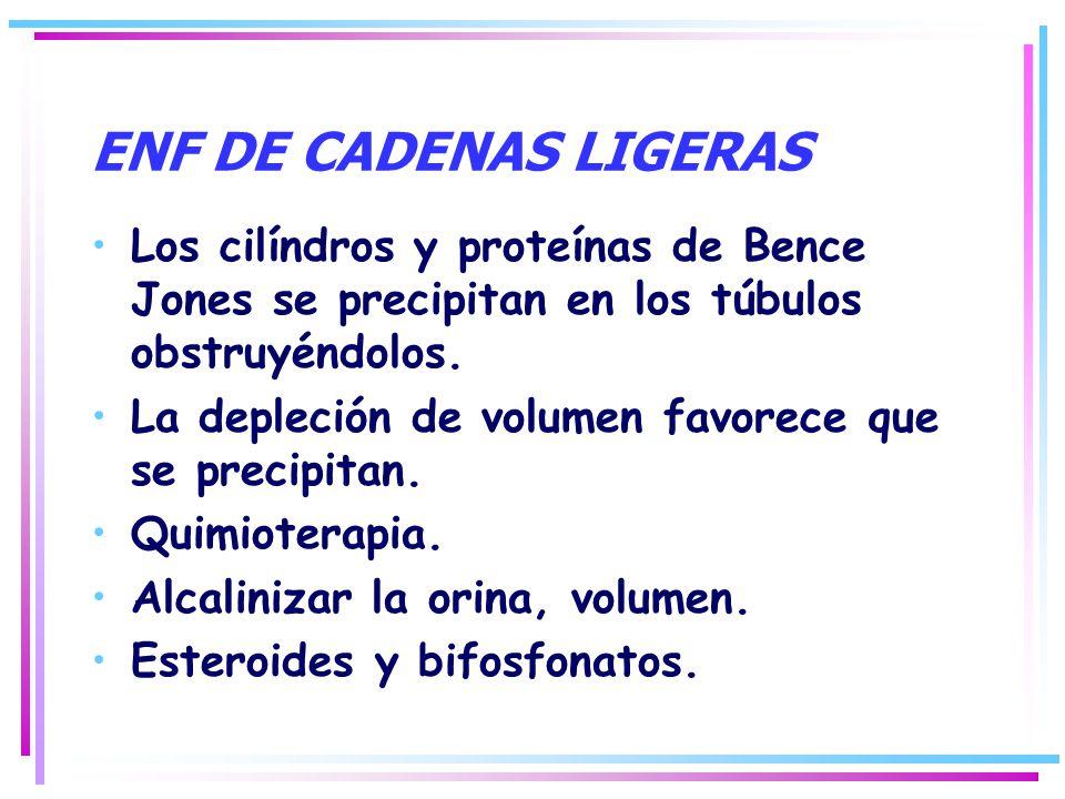 ENF DE CADENAS LIGERAS Los cilíndros y proteínas de Bence Jones se precipitan en los túbulos obstruyéndolos. La depleción de volumen favorece que se p