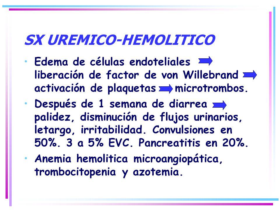 Edema de células endoteliales liberación de factor de von Willebrand activación de plaquetas microtrombos. Después de 1 semana de diarrea palidez, dis