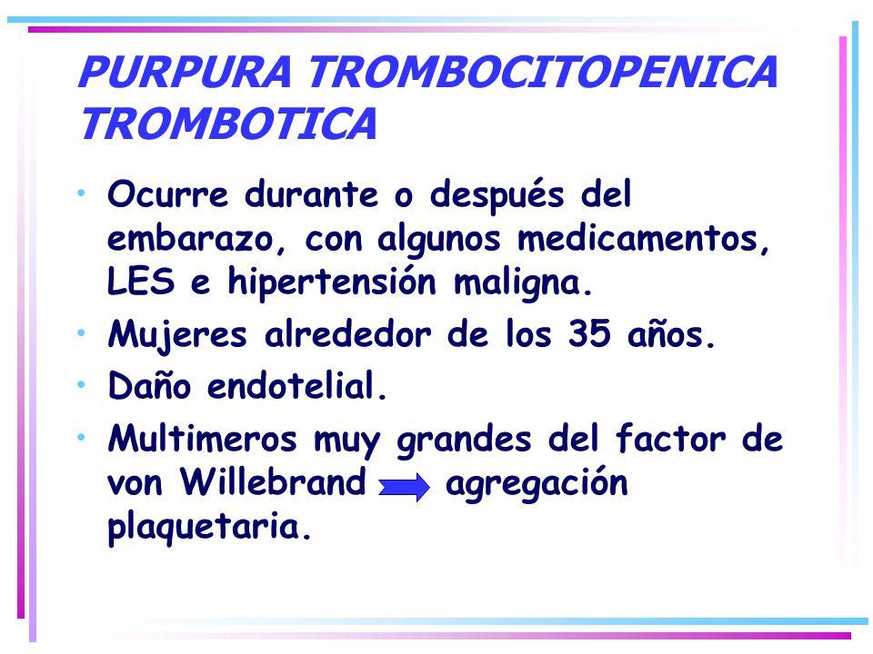 PURPURA TROMBOCITOPENICA TROMBOTICA Ocurre durante o después del embarazo, con algunos medicamentos, LES e hipertensión maligna. Mujeres alrededor de