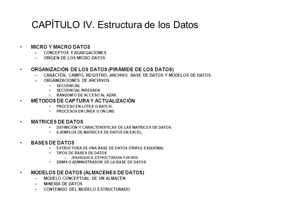 CAPÍTULO IV. Estructura de los Datos MICRO Y MACRO DATOS –CONCEPTOS Y AGREGACIONES –ORIGEN DE LOS MICRO DATOS ORGANIZACIÓN DE LOS DATOS (PIRÁMIDE DE L