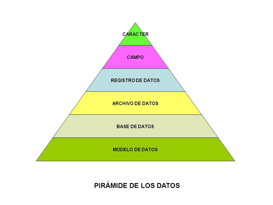 CARACTER CAMPO REGISTRO DE DATOS ARCHIVO DE DATOS BASE DE DATOS MODELO DE DATOS PIRÁMIDE DE LOS DATOS
