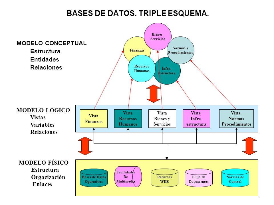 BASES DE DATOS. TRIPLE ESQUEMA. MODELO CONCEPTUAL Estructura Entidades Relaciones Finanzas Infra- Estructura Bienes Servicios Normas y Procedimientos