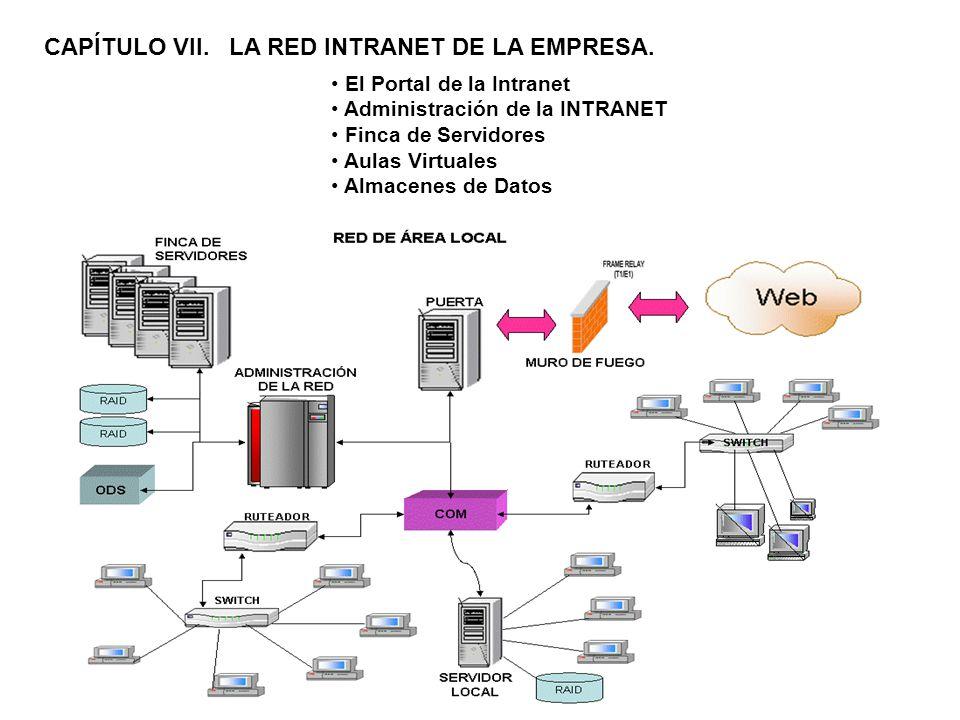 CAPÍTULO VII. LA RED INTRANET DE LA EMPRESA. El Portal de la Intranet Administración de la INTRANET Finca de Servidores Aulas Virtuales Almacenes de D