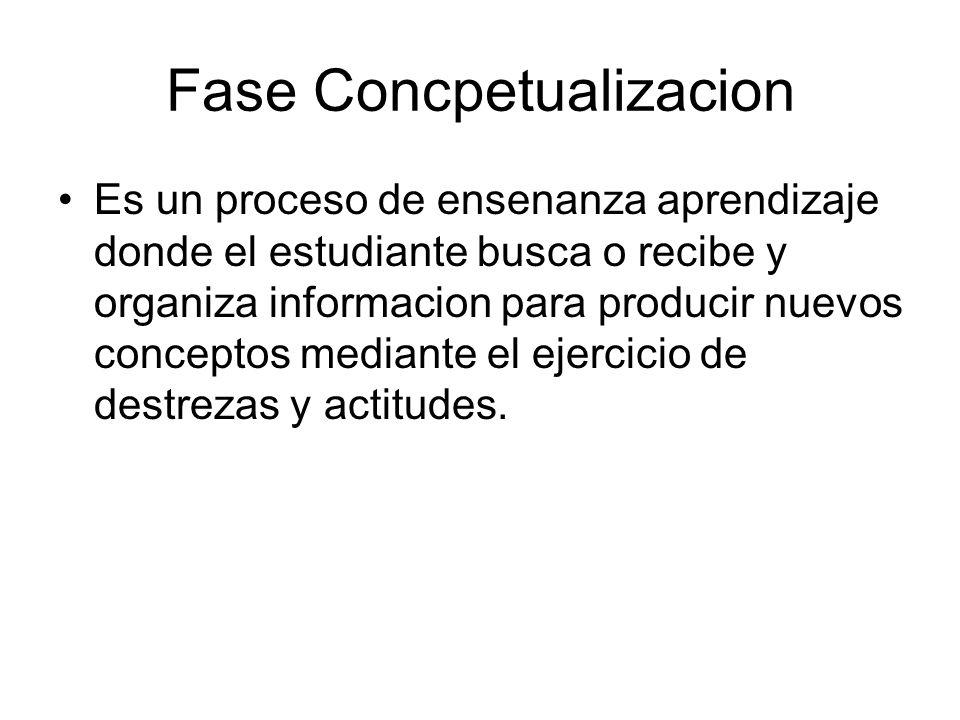 Fase Concpetualizacion Es un proceso de ensenanza aprendizaje donde el estudiante busca o recibe y organiza informacion para producir nuevos conceptos