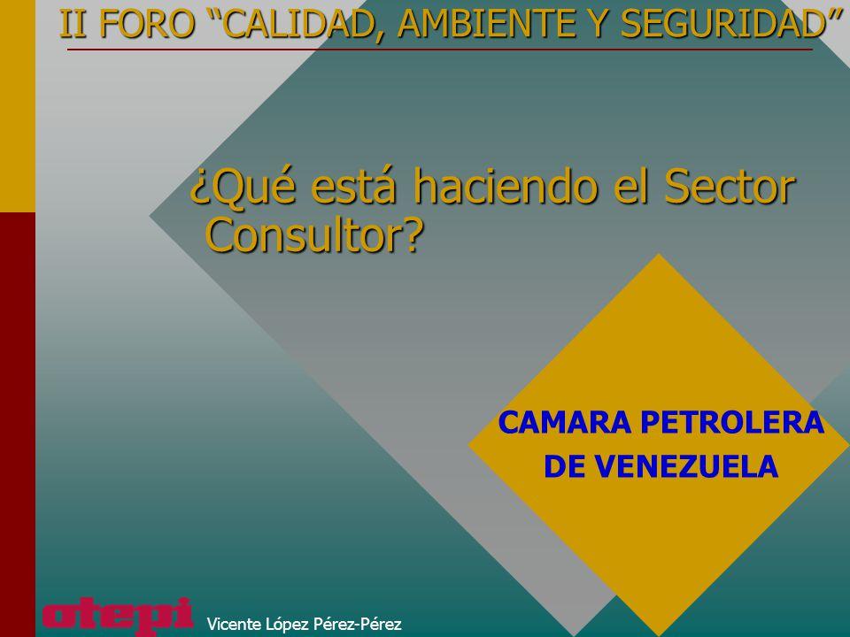 Vicente López Pérez-Pérez ¿Qué está haciendo el Sector Consultor? II FORO CALIDAD, AMBIENTE Y SEGURIDAD CAMARA PETROLERA DE VENEZUELA
