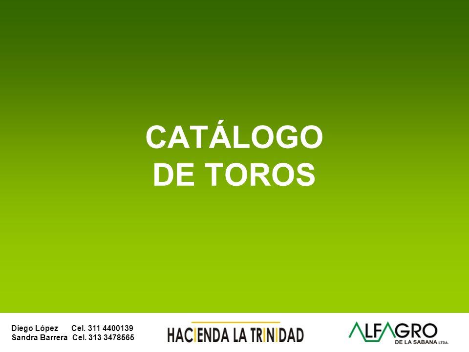 Diego López Cel. 311 4400139 Sandra Barrera Cel. 313 3478565 SIMMENTAL
