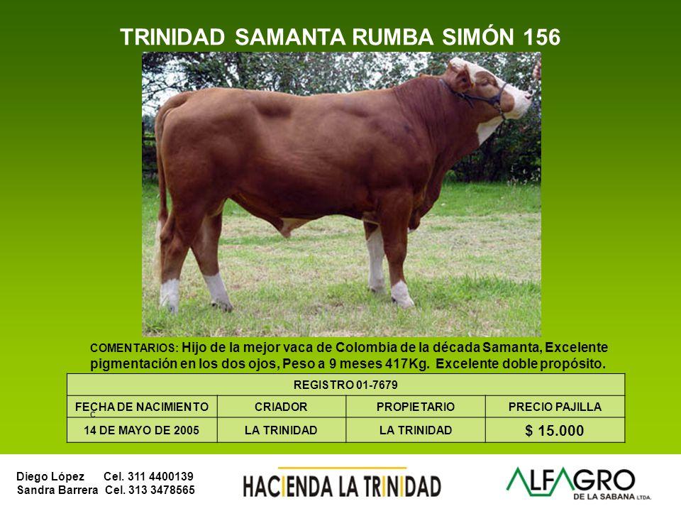 Diego López Cel. 311 4400139 Sandra Barrera Cel. 313 3478565 BRAHMAN