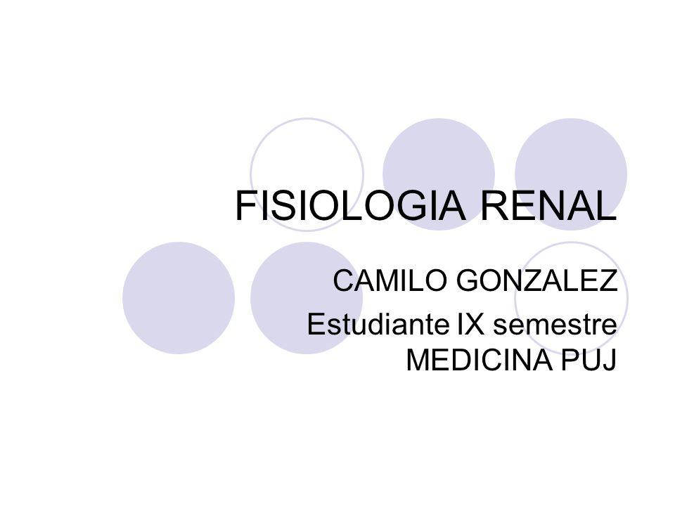 FISIOLOGIA RENAL CAMILO GONZALEZ Estudiante IX semestre MEDICINA PUJ