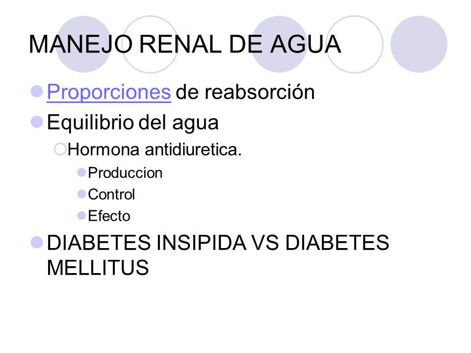 MANEJO RENAL DE AGUA Proporciones de reabsorción Proporciones Equilibrio del agua Hormona antidiuretica. Produccion Control Efecto DIABETES INSIPIDA V