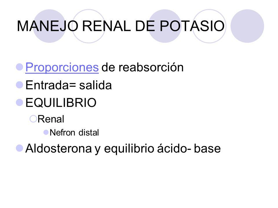 MANEJO RENAL DE POTASIO Proporciones de reabsorción Proporciones Entrada= salida EQUILIBRIO Renal Nefron distal Aldosterona y equilibrio ácido- base