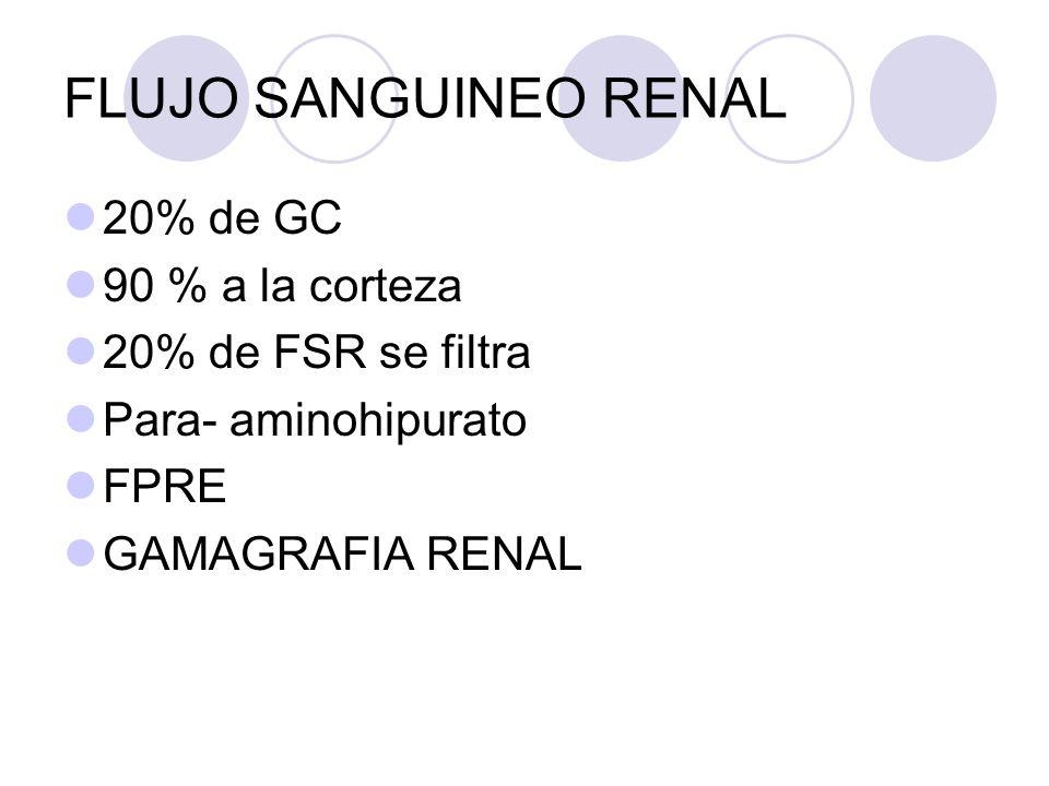 FLUJO SANGUINEO RENAL 20% de GC 90 % a la corteza 20% de FSR se filtra Para- aminohipurato FPRE GAMAGRAFIA RENAL