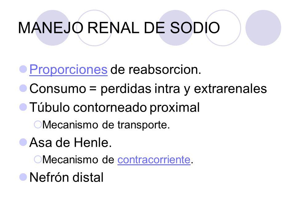 MANEJO RENAL DE SODIO Proporciones de reabsorcion. Proporciones Consumo = perdidas intra y extrarenales Túbulo contorneado proximal Mecanismo de trans