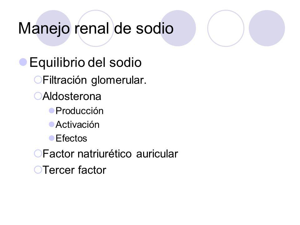 Manejo renal de sodio Equilibrio del sodio Filtración glomerular. Aldosterona Producción Activación Efectos Factor natriurético auricular Tercer facto