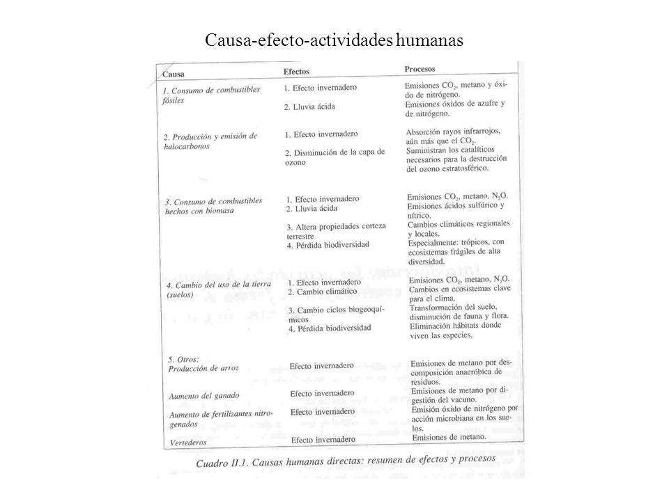 Causa-efecto-actividades humanas