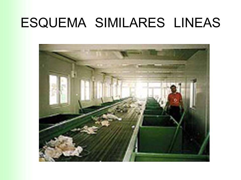 ESQUEMAS SIMILARES LINEAS