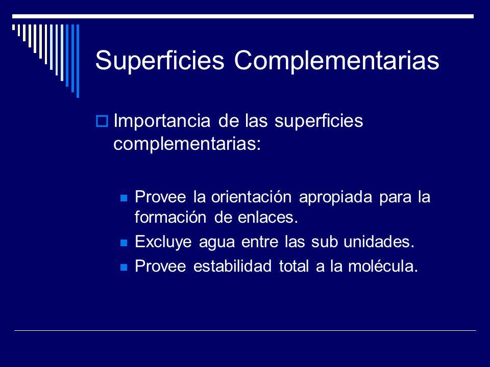 Superficies Complementarias Importancia de las superficies complementarias: Provee la orientación apropiada para la formación de enlaces. Excluye agua
