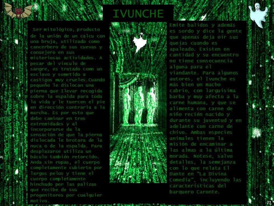 Ser mitológico, producto de la unión de un calcu con una bruja, utilizado como cancerbero de sus cuevas y consejero en sus misteriosas actividades.