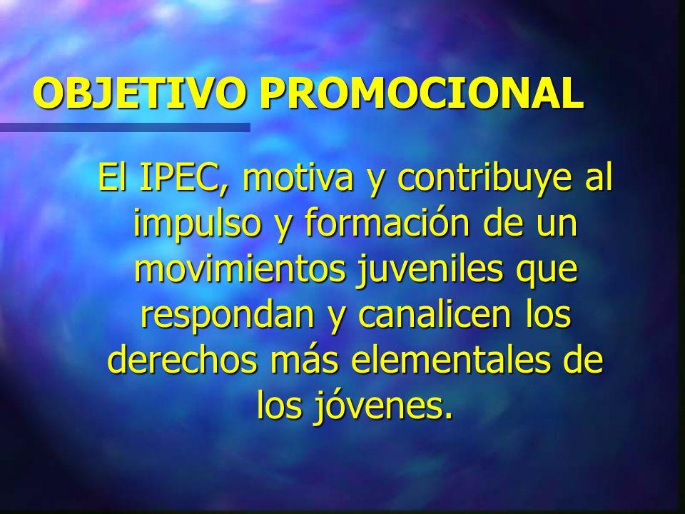 EL ACOMPAÑAMIENTO DEL IPEC Promocionando las organizaciones de jóvenes para su actoría social