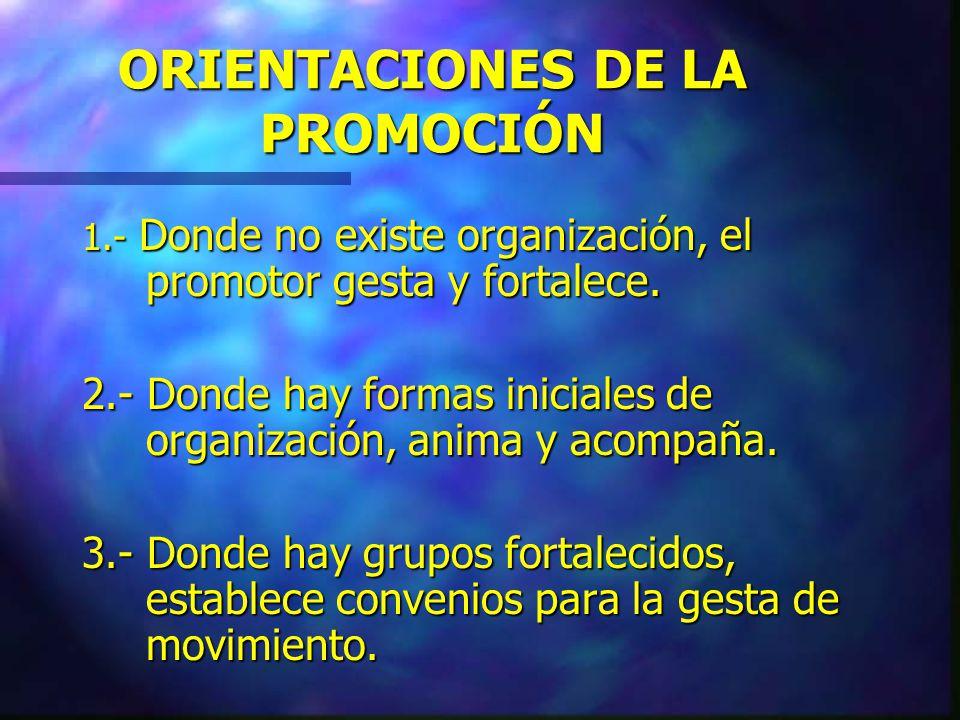 LAS ORGANIZACIONES DE JÓVENES 1.- Grupos juveniles espontáneos de tiempo libre.