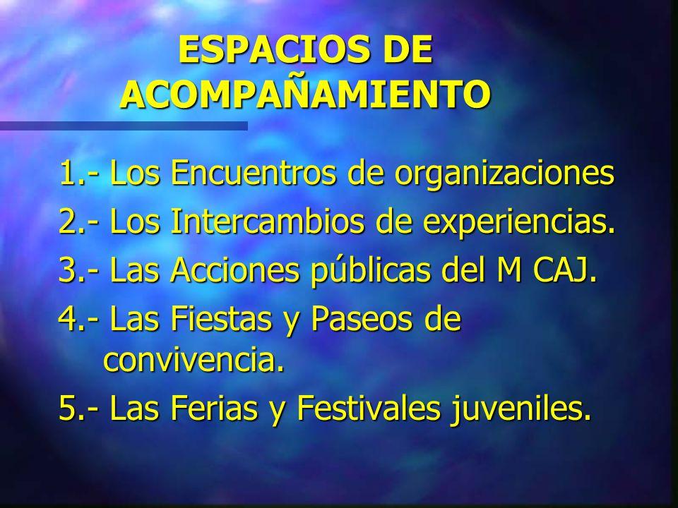 ORIENTACIONES DE LA PROMOCIÓN 1.- Donde no existe organización, el promotor gesta y fortalece.