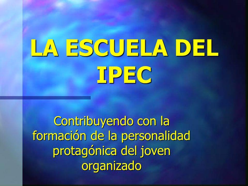 ESPACIOS DE ACOMPAÑAMIENTO 1.- Los Encuentros de organizaciones 2.- Los Intercambios de experiencias.