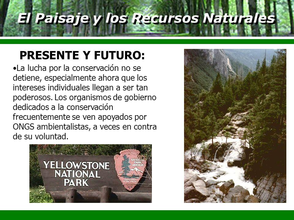 El Paisaje y los Recursos Naturales La lucha por la conservación no se detiene, especialmente ahora que los intereses individuales llegan a ser tan po