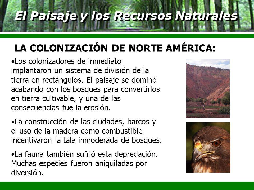 El Paisaje y los Recursos Naturales Los colonizadores de inmediato implantaron un sistema de división de la tierra en rectángulos. El paisaje se domin