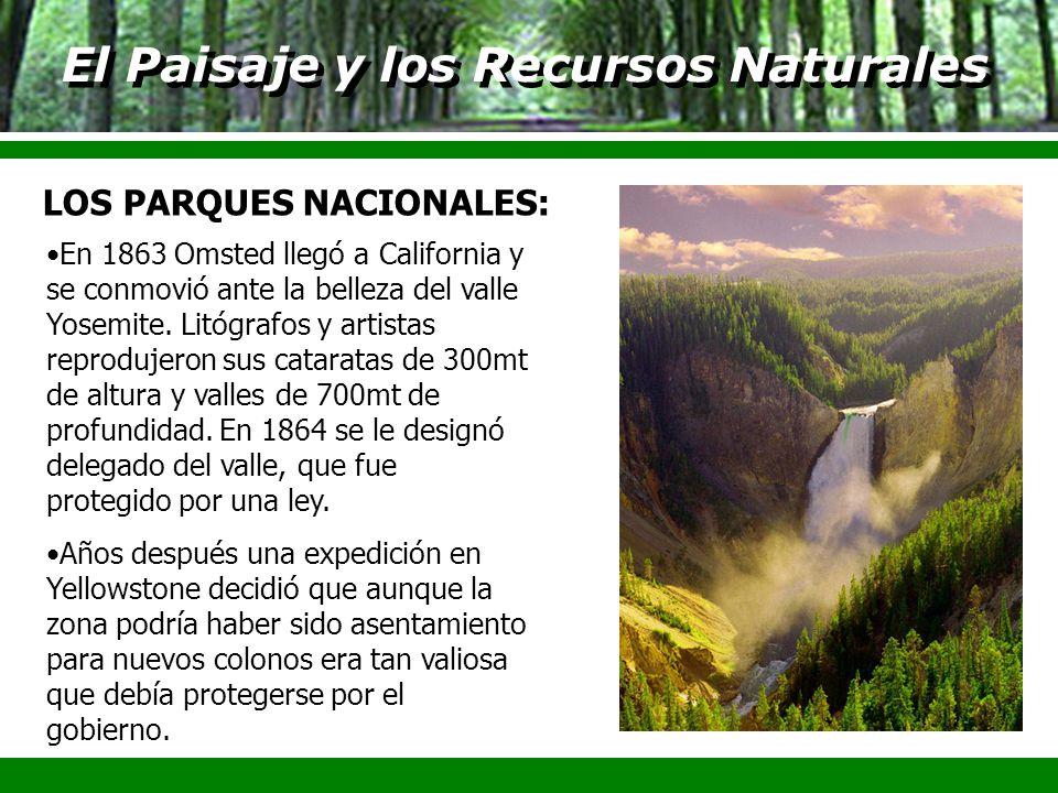 El Paisaje y los Recursos Naturales En 1863 Omsted llegó a California y se conmovió ante la belleza del valle Yosemite. Litógrafos y artistas reproduj