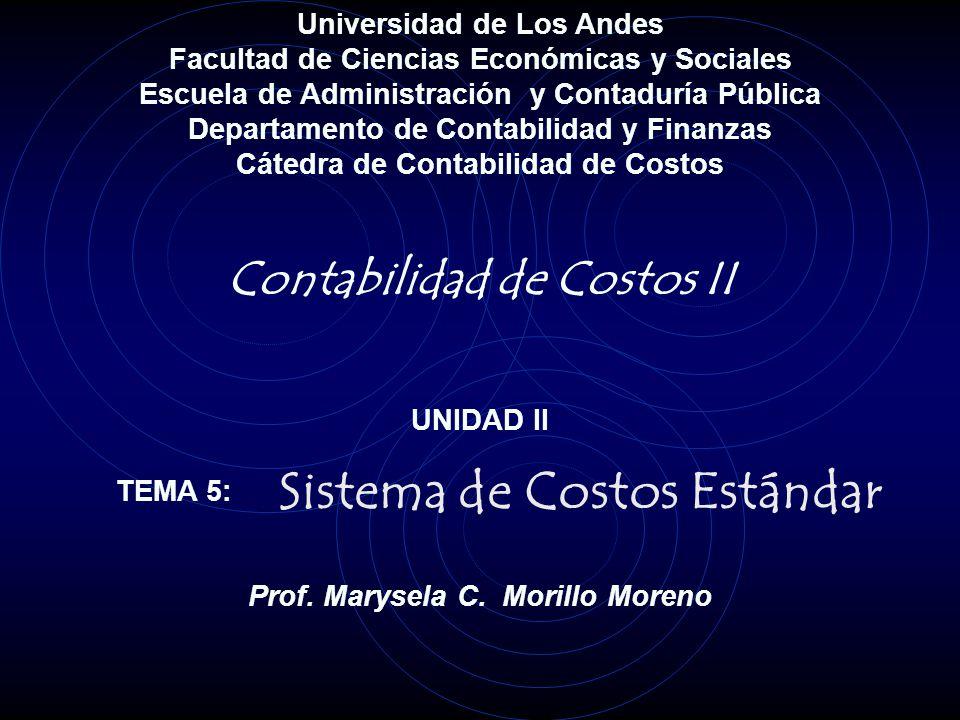 Universidad de Los Andes Facultad de Ciencias Económicas y Sociales Escuela de Administración y Contaduría Pública Departamento de Contabilidad y Fina