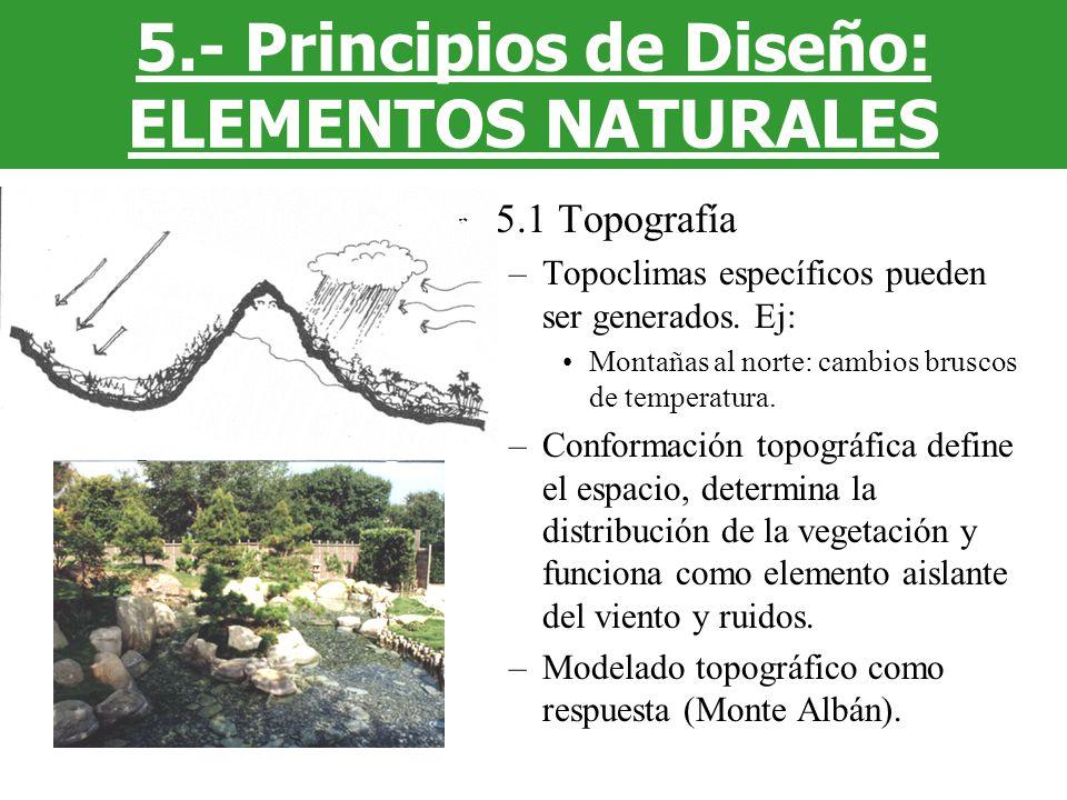 5.1 Topografía –Topoclimas específicos pueden ser generados. Ej: Montañas al norte: cambios bruscos de temperatura. –Conformación topográfica define e