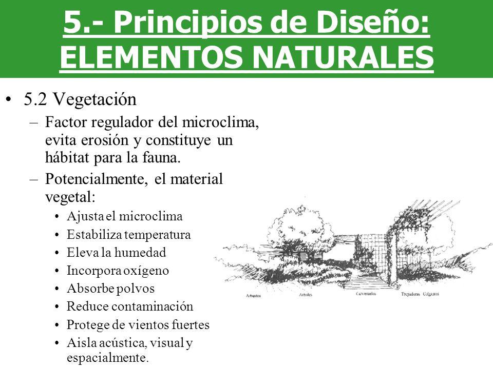 5.2 Vegetación –Factor regulador del microclima, evita erosión y constituye un hábitat para la fauna. –Potencialmente, el material vegetal: Ajusta el