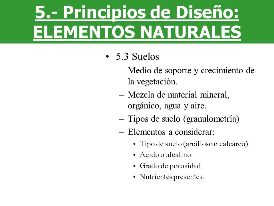5.3 Suelos –Medio de soporte y crecimiento de la vegetación. –Mezcla de material mineral, orgánico, agua y aire. –Tipos de suelo (granulometría) –Elem