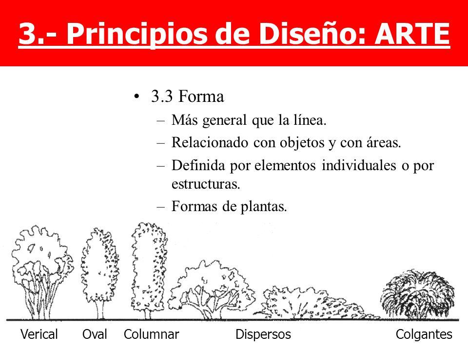 3.3 Forma –Más general que la línea. –Relacionado con objetos y con áreas. –Definida por elementos individuales o por estructuras. –Formas de plantas.