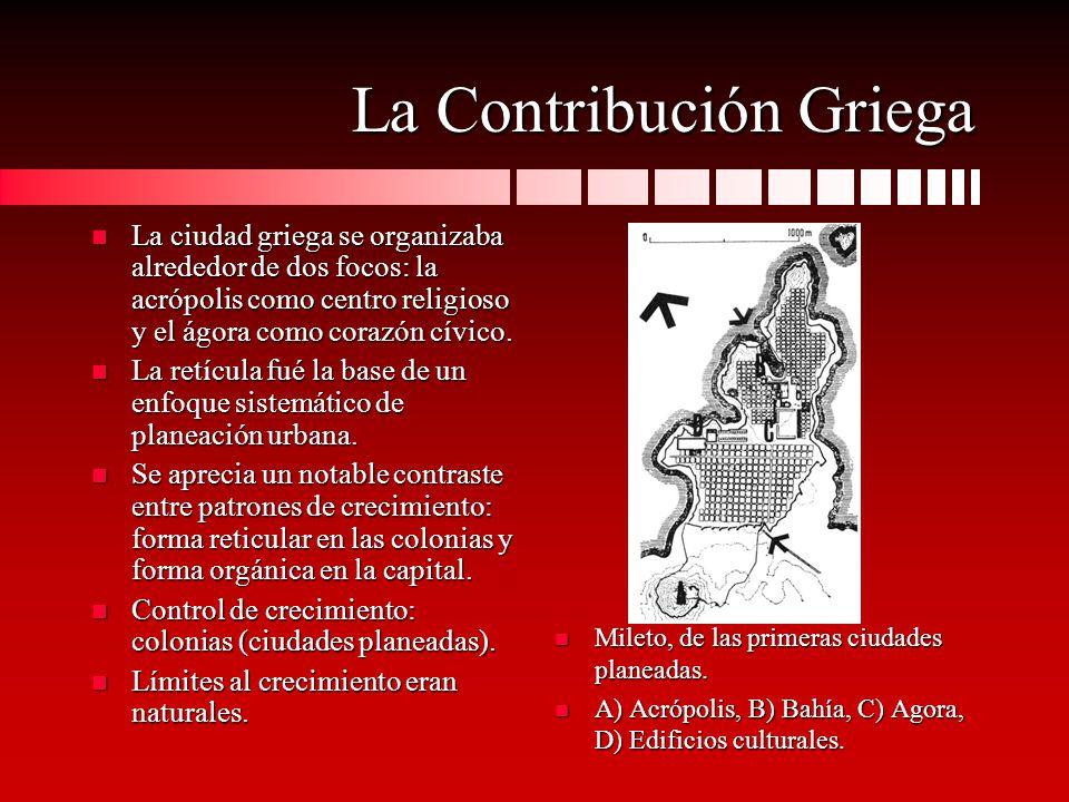 La Contribución Griega n La ciudad griega se organizaba alrededor de dos focos: la acrópolis como centro religioso y el ágora como corazón cívico. n L