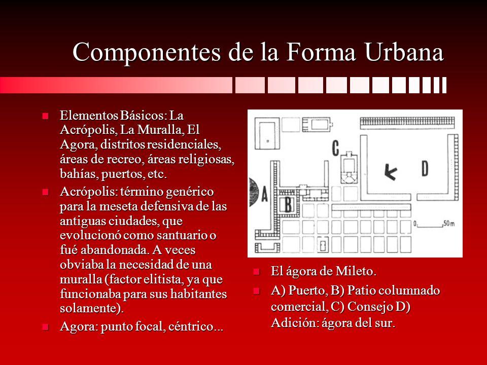 Componentes de la Forma Urbana n Elementos Básicos: La Acrópolis, La Muralla, El Agora, distritos residenciales, áreas de recreo, áreas religiosas, ba