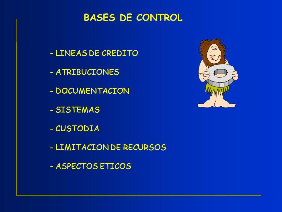 BASES DE CONTROL - LINEAS DE CREDITO - ATRIBUCIONES - DOCUMENTACION - SISTEMAS - CUSTODIA - LIMITACION DE RECURSOS - ASPECTOS ETICOS