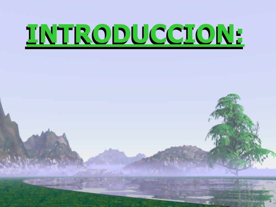 INTRODUCCION: