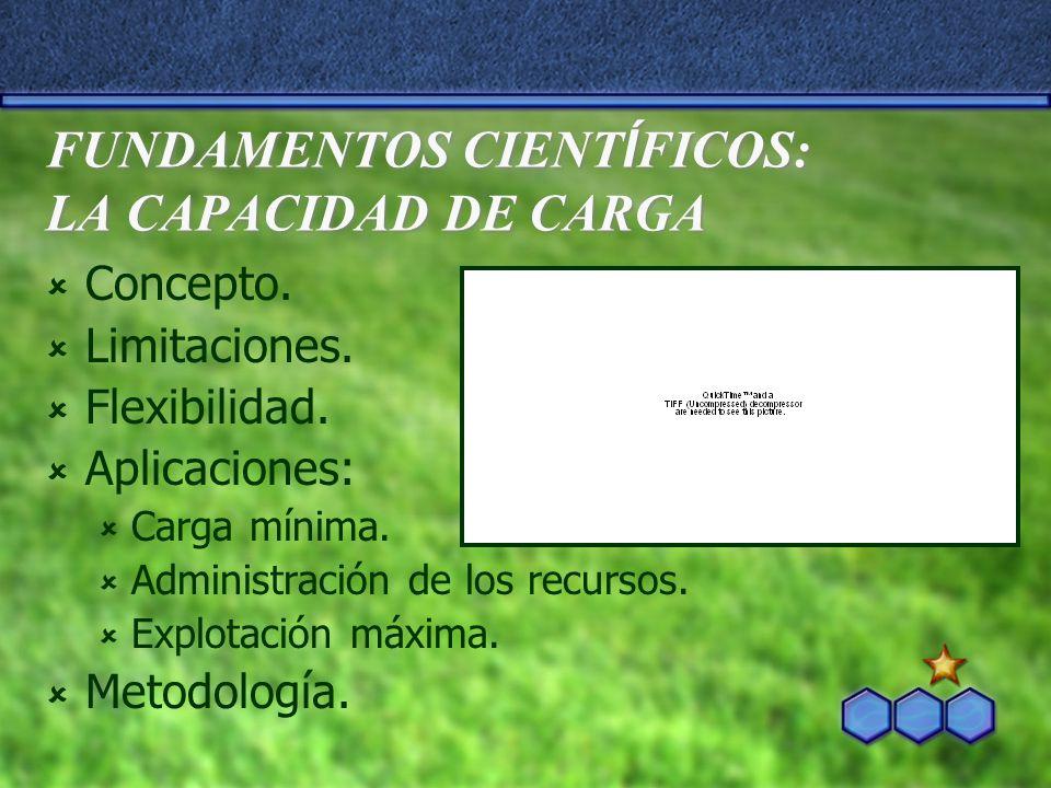 FUNDAMENTOS CIENT Í FICOS: LA CAPACIDAD DE CARGA Concepto.