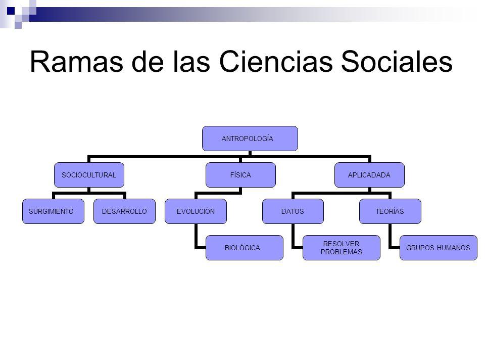 Ramas de las Ciencias Sociales Ciencias Políticas – Ciencia social que estudia las formas en que los seres humanos se organizan, toman decisiones y ejercen el poder.