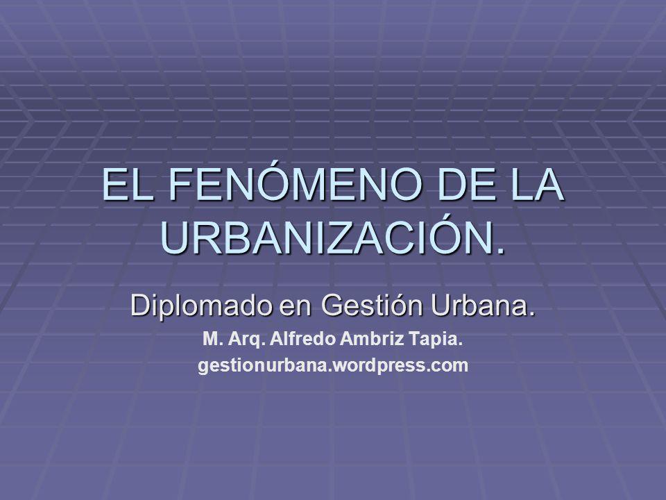EL FENÓMENO DE LA URBANIZACIÓN.Diplomado en Gestión Urbana.
