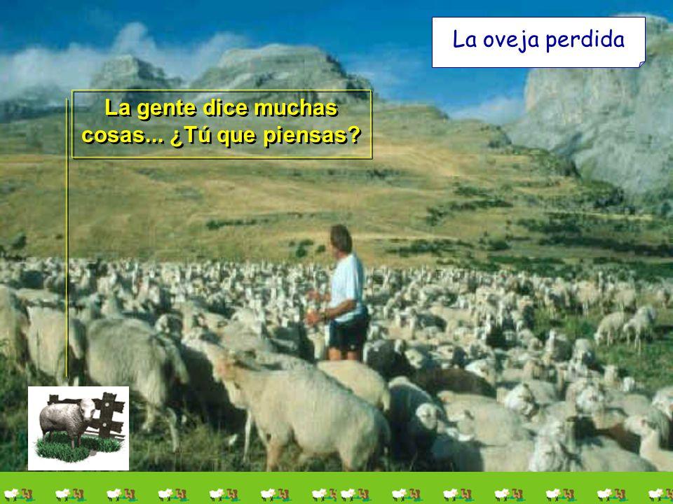 La oveja perdida Es una historia bonita y con mucho contenido. Hay quien dice que hoy son noventa y nueve las que se han ido y sólo queda una. Es una