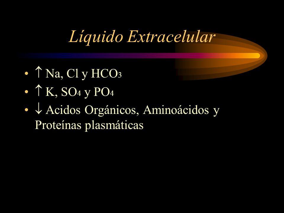 Sistema de amortiguamiento acido-base -Iones de hidrogeno en líquidos orgánicos. -Sist. Amortiguador del bicarbonato. -Sist. Amortiguador fosfato y pr