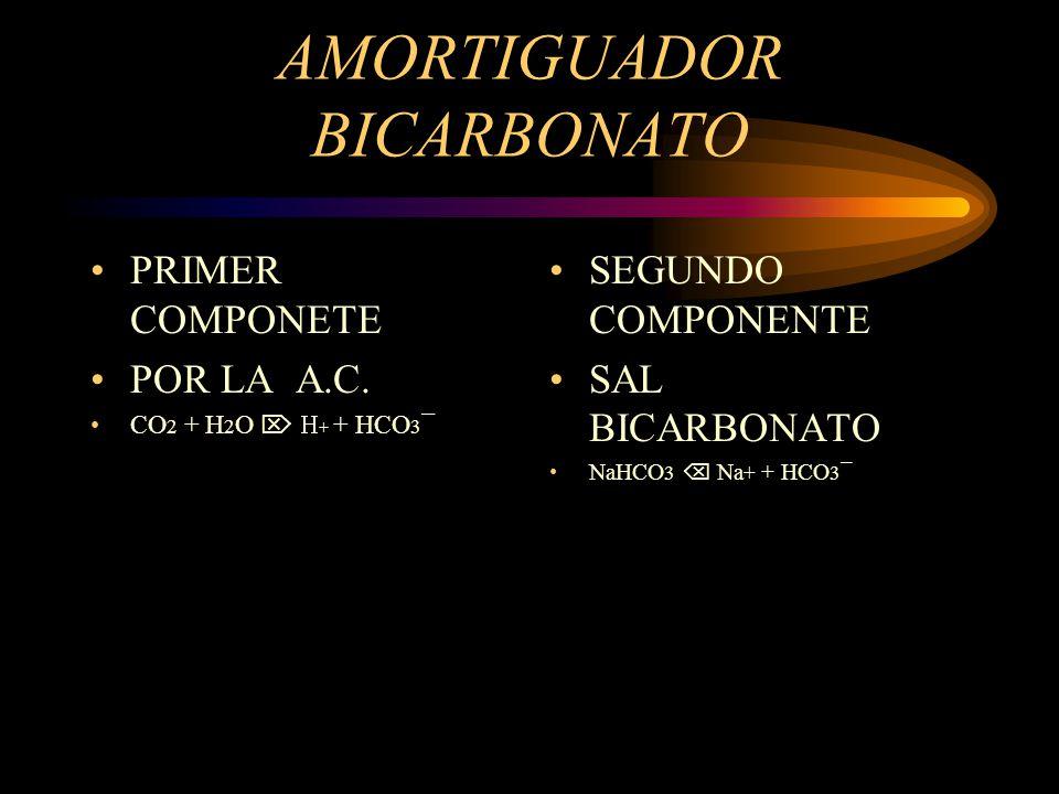 AMORTIGUADOR BICARBONATO Tiene su funciòn mayormente en el líquido extracelular. Primer componente en alveolos y tubulos renales, por medio de anhidra